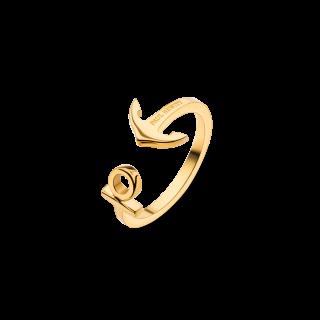 anchorring_gold_600x600@2x